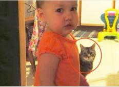 Mama je ujela na kamero, kaj hčerka in mačka počneta vsako jutro!